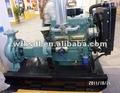 diesel bomba de água definida para irrigação agrícola