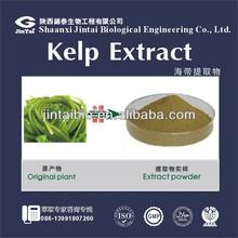 kelp powder nutrition 10%
