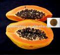 GDO ücretsiz Papayaiçin çekirdeği toz papaya sabun cildi beyazlatıcı