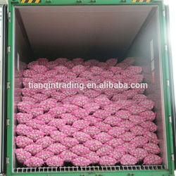 chinese normal white garlic price China Garlic/AJO/ALI/ALHO