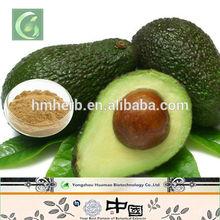 Made in China avocado extract 5:1 10:1 20:1,avocado wholesale price