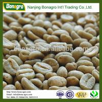 green bulk arabica coffee bean