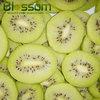 IQF organic frozen fruits natural chinese wholesale fresh kiwi fruit