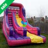 Commercial inflatable princess slide,dry slide