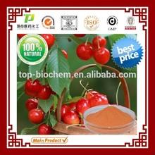 Manufacturer Supply 100% Pure Natural vitamin C 17% Acerola Cherry Extract Vitamin C