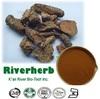 /product-gs/natural-rhodiola-rosea-extract-3-rosavins-60019798623.html