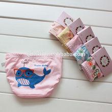 2014 kids Organic Cotton cartoon underwear