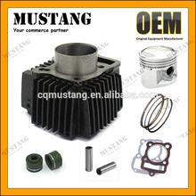 OEM Engine Cylinder CG/WY/CB/AX100/C100/CD110/GY6 Motorcycle Cylinder