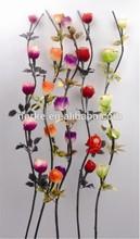 2014 Latest Decorative Dried Flowers
