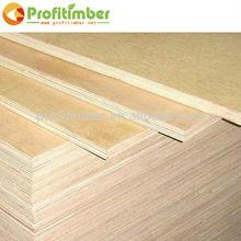 Waterproof Plywood Doors Design for Sale