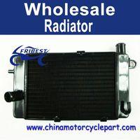2002-2005 For Aprilia RSV1000 Tuono Aluminium Radiator FRDAP001