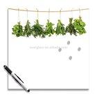 Platin Art Memo Board, Hanging Herbs