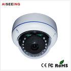 2 Megapixel 130 Degree Vandalproof Fisheye IP IR Dome security Camera