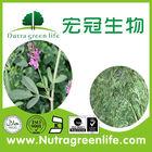 factory outlet Chinese herb original Herbal Medicine Medicago sativa