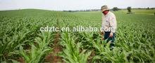 EDDHA Fe farm fertilizer