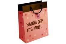 Offset Printing Small Christmas Gift Packaging Paper Bags with Twisted Cotton Handle