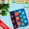 China Supplier FDA/SGS Food Grade Custom Made Plastic Recycled Fruit Tray