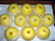 2014 golden pear delicious organic fruit