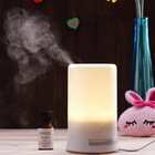 100ml ultrasonic cool mist humidifier aroma diffuser