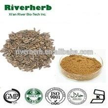 Natural Burdock Seed extract with 10% Arctiin