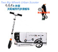 2014 New Model 100% Alumnium, foldable Mini Urban&Adult Scooter Good quality with double suspension