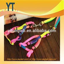 Colourful Pet Collar/High Quality pet leash