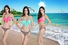Sexy Swimsuit Fringe Bikini Brazilian Moda praia Biquini Franja roupa Feminina Fio dental maio saida de praia Frete Gratis