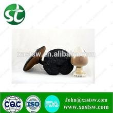 wood log cultivated Ganoderma Extract/Reishi mushroom Extract Polysaccharide & Triterpene