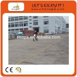 Super Chinese Lifan Engine Very Cheap Dirt Bike 250CC