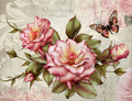 rosa rose blume für behälter keramik
