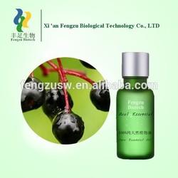 Bulk supply 100% natural Sambucus chinensis oil,Sambucus chinensis extract liquid