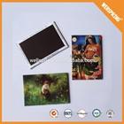 Factory cheap price souvenir 0.52mm paper resin fridge magnet,3d fridge magnet,pvc fridge magnet