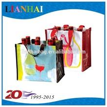 six wine bottle bag