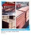 Cathode de cuivre acheter de bonne qualité pour les ventes/cathode de cuivre