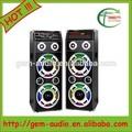 Dual 10 pulgadas altavoz Karaoke Professional 2.0 altavoces Gem-60019