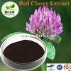 Red Clover P.E.Powder