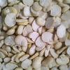 2014 crop split broad bean dried