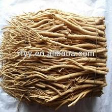 Natural Chinese herbal medicine/Radix Astragali