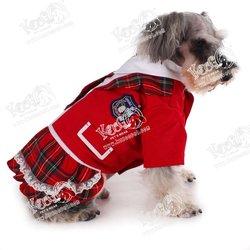 AKB48 campus uniform for pets