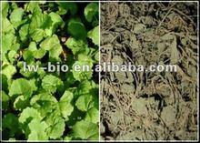 Centella asiatica extract , Active ingredient: Triterpenoid saponis, Asiaticoside