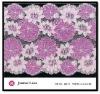Fashion Lady Dress Accessories Lycra Stretched Flower Lace Trim 30141