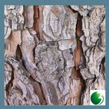 Artifical Additive Free Pine Bark Extract (Latin : Pinus massoniana Lamb)