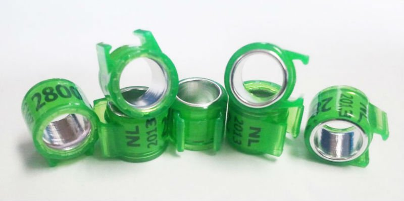 2014 pigeon ring band, View plain ring band, GSF Product Details from