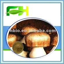 Natural ABM Mushroom/Roral Sun Agaricus 20%-50% Polysaccharide Powder Supplier