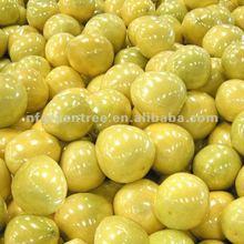 New arrival fresh grapefruit citrus fruit