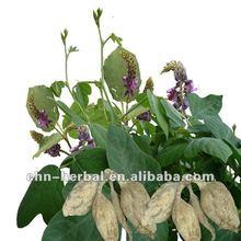 Factory direct sale Magnolol Honokiol supplement organic magnolia bark extract
