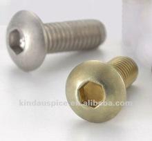 Titanium Screw - ISO 7380 Hex Socket Head Cap Screws