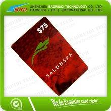 2012 SALON SPA MEMBERSHIP CARD