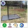 dog box cage DXW003