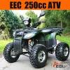ATV 250cc EEC Quad Bike (Quality )
